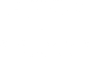 bridge main logo white
